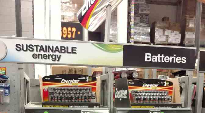 Sustainable Energy from Home Depot