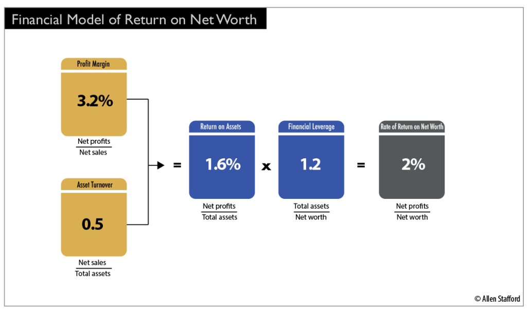 Financial Model of Return on Net Worth graphic chart