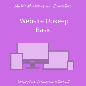 one year basic website upkeep