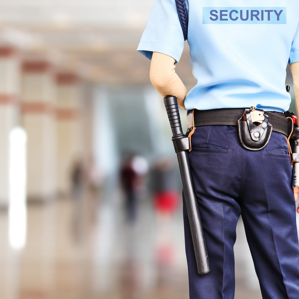 Corporate Executive Protection Jobs