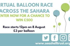 Virtual Balloon Race across Sahara raises funds for Seashell Trust