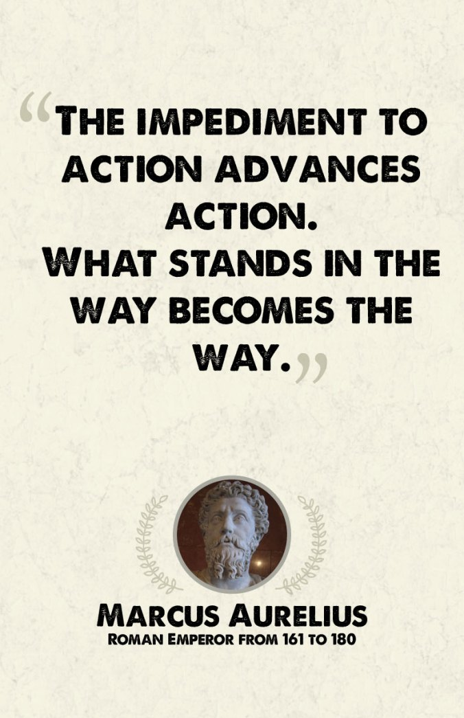 """The impediment to action advances action. What stands in the way becomes the way."" - Marcus Aurelius"