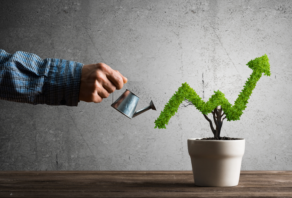 Factors Affecting Business Growth