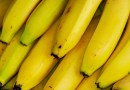 The Banana Wars: plundering Central America for fruit
