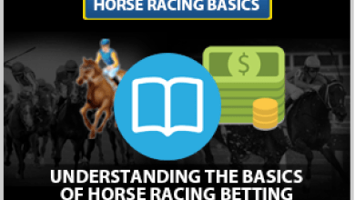 Photo of Horse Racing Betting Systems
