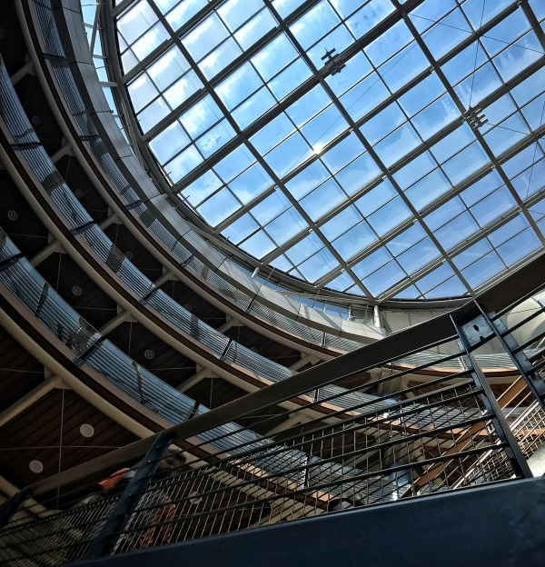 165/365 Choosing to see the upside in our most painful experiences
