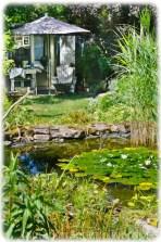 Der Seerosenteich mit einer Hütte zum Ausruhen im nordischen Stil