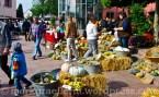 Kartoffelmarkt 19