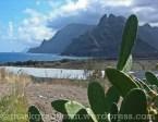 Die Landschaft von Teneriffa - hier wird sehr viel Obst und Gemüse angebaut
