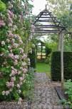 Garten Marguerite24