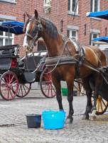 T Oud Kanthuys_Begijnhof 16