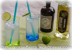 Pimientos de Padron und Aubergine Lime Rickey4