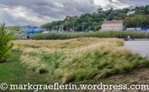 lyon-wochenende-confluence10