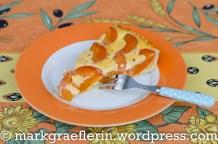 Aprikosen Tarte 2