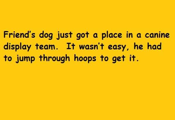 jump through hoops