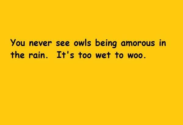 Too Wet To Woo