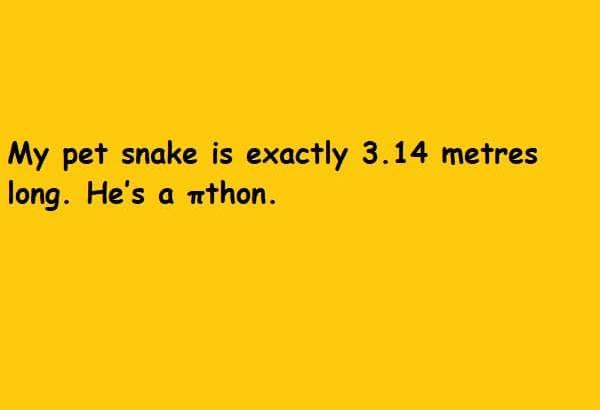 snake size