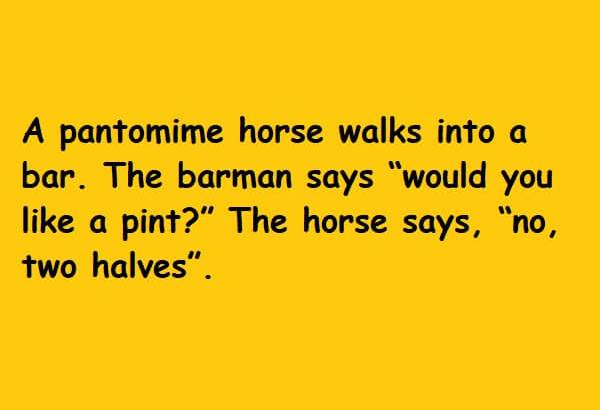 The horse says no two halves