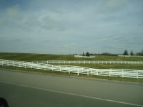 This is a big place where horses live.