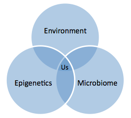 epigenetics and environment