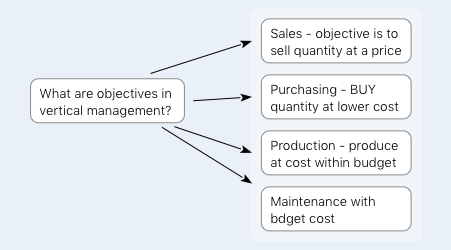 objectives in vertical management