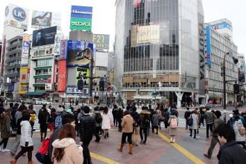 Shibuya, Japan's busiest crossing.