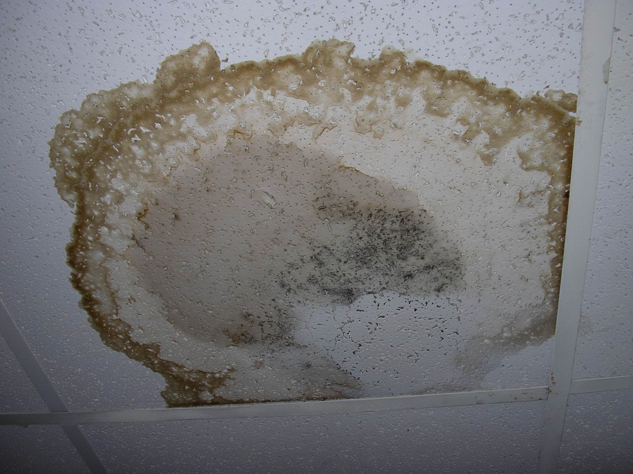ceiling _stain