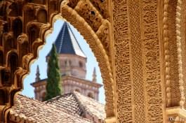 Nasrid Palaces 5