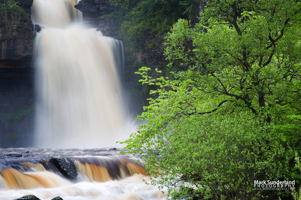 Thornton Force in full flow after heavy rain, Ingleton, Yorkshire Dales