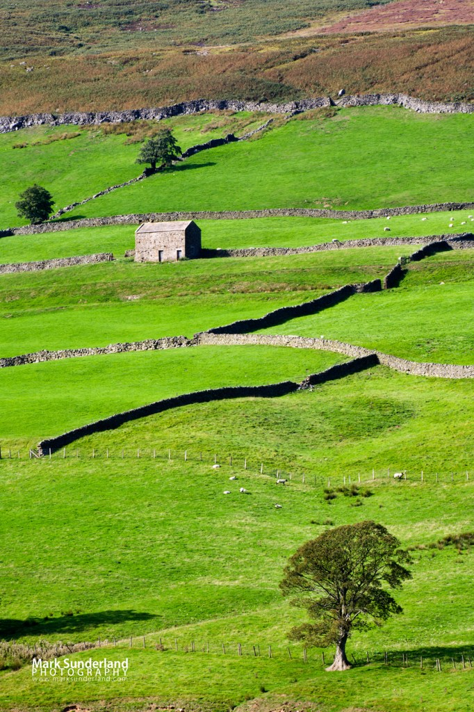 Barn and Dry Stone Walls in Upper Nidderdale, North Yorkshire