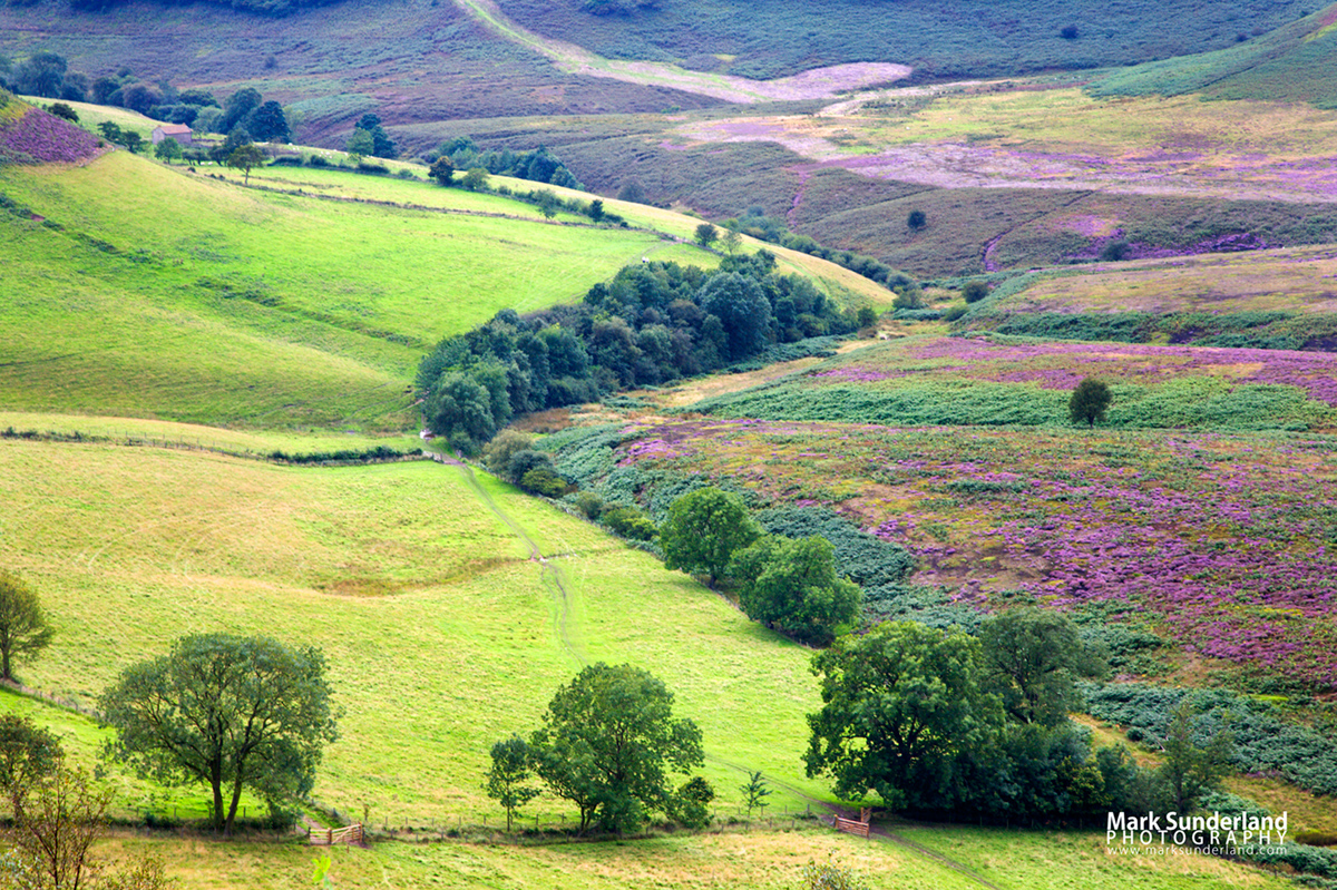 Hole of Horcum in summer, North York Moors
