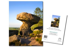 Brimham Rocks - The Druid's Writing Desk