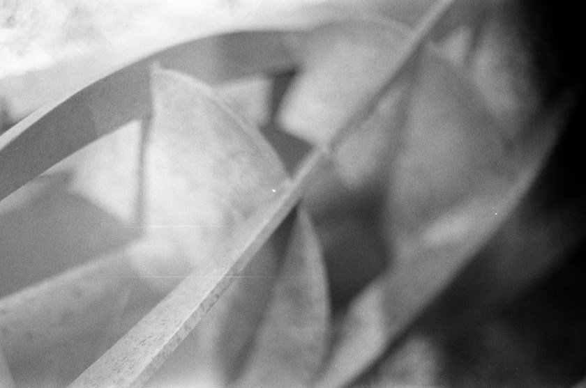 Black and white film spiral