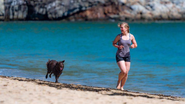 犬と砂浜をジョギング