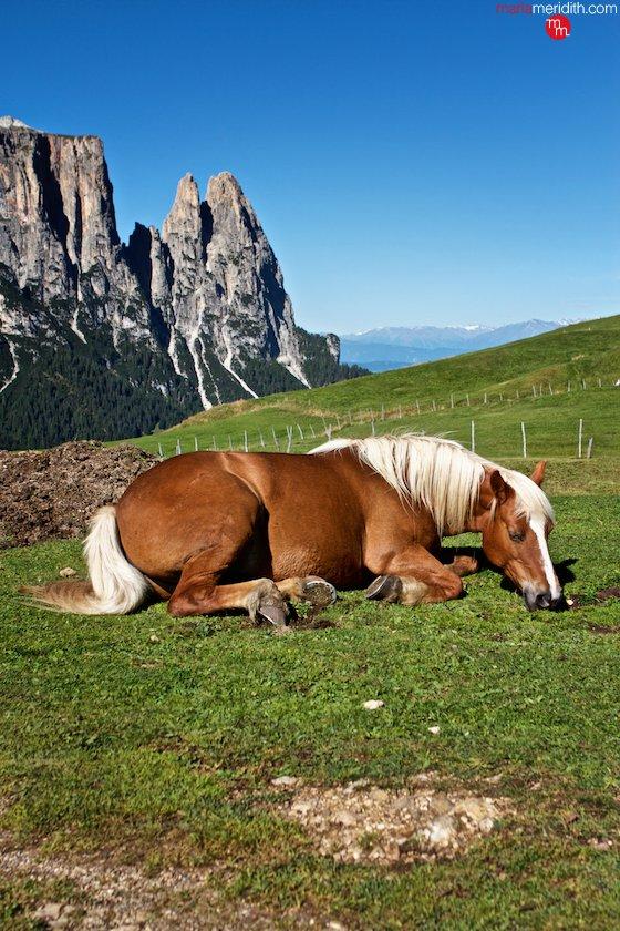 The Italian Dolomites. An epic trekking trip! MarlaMeridith.com ( @marlameridith ) #travel