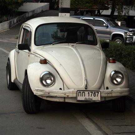 """White Bug"""