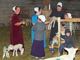 Fun With the Lambs