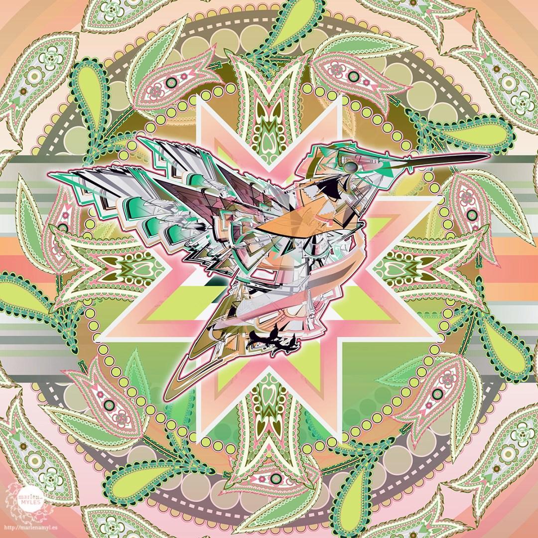Vector illustration of a Native American Naǧídan Naǧí | Dakota Hummingbird Spirit