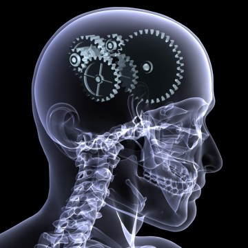 brain programming