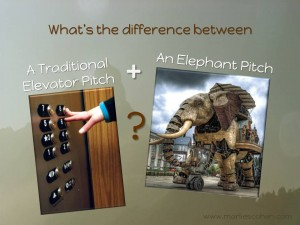 traditional elevator pitch vs elephant pitch