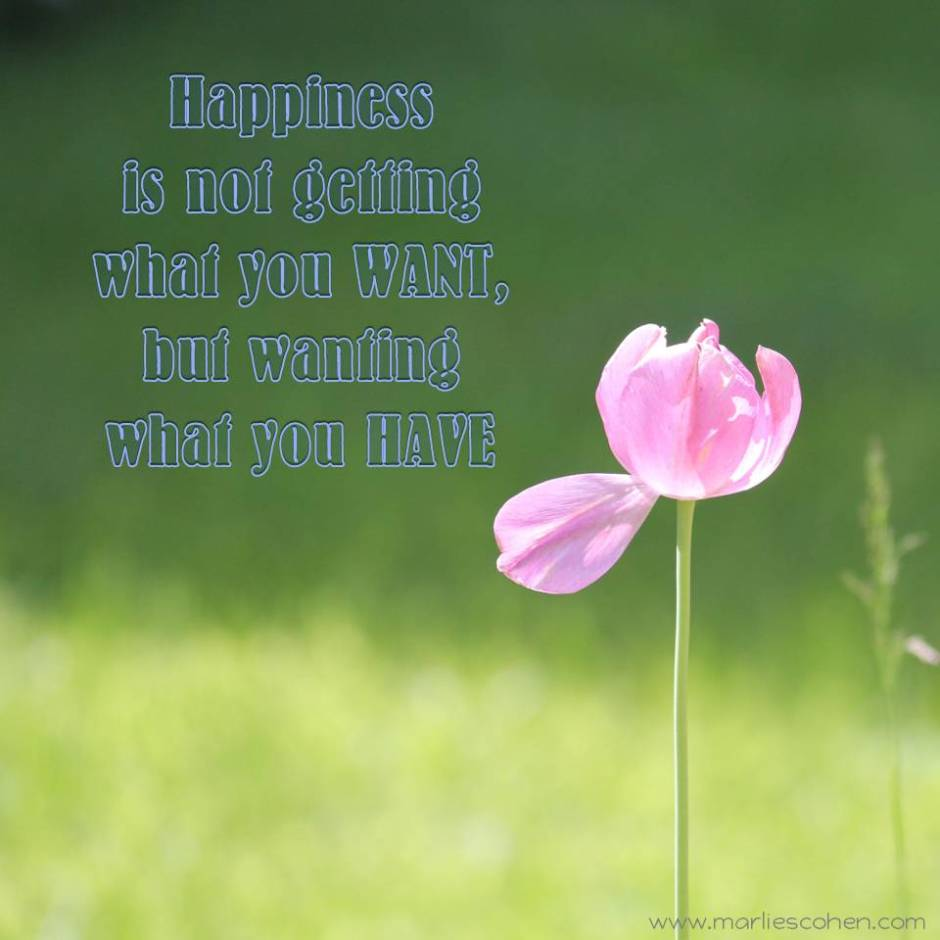 happiness is what you have
