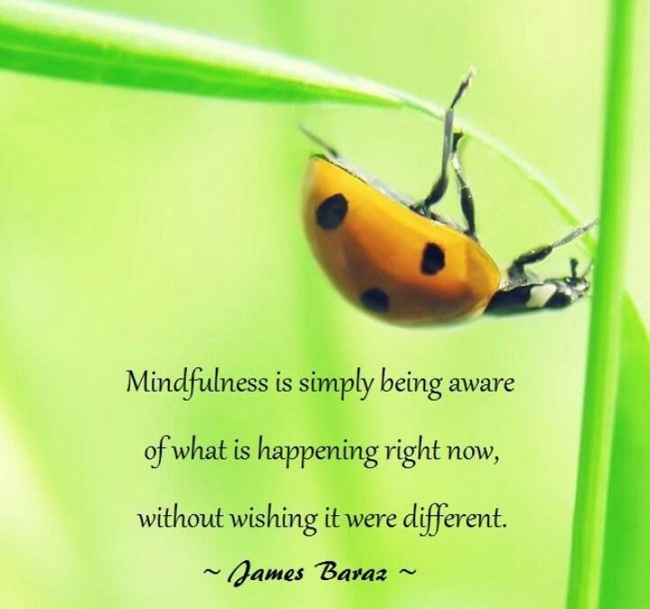Stilte in de mindfulnessbeoefening.