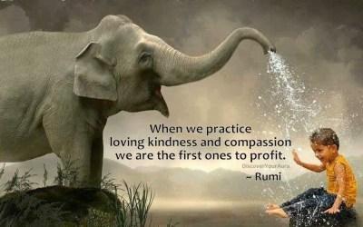 Compassie