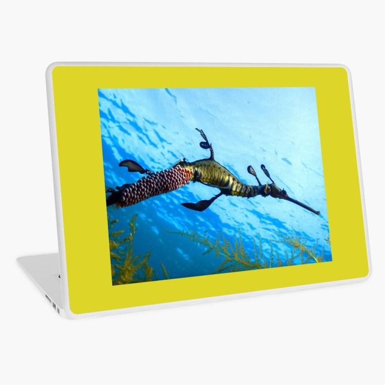 Laptop PC Surface MacBook Protective Skin Weedy Seadragon Print