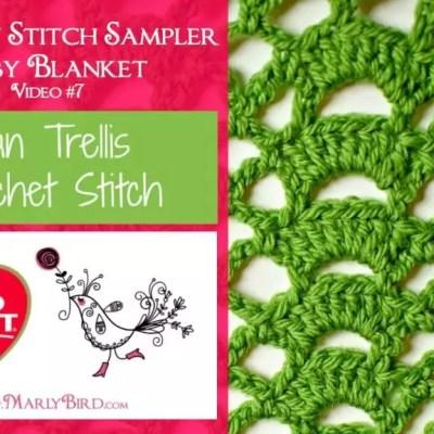 Fan Trellis Crochet Stitch