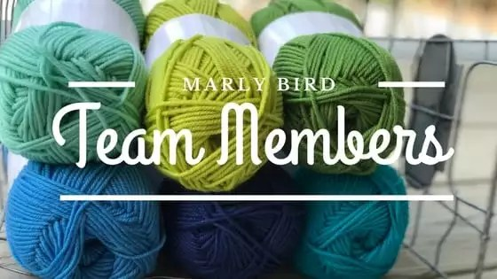 Meet the newest members of the Marly Bird Team