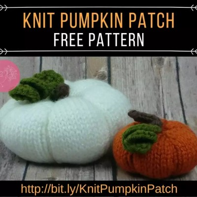 Your Own Knit Pumpkin Patch