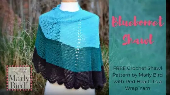 FREE Crochet Shawl Pattern by Marly Bird-the Bluebonnet Shawl
