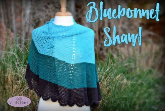 Free Crochet Pattern Bluebonnet Shawl by Marly Bird