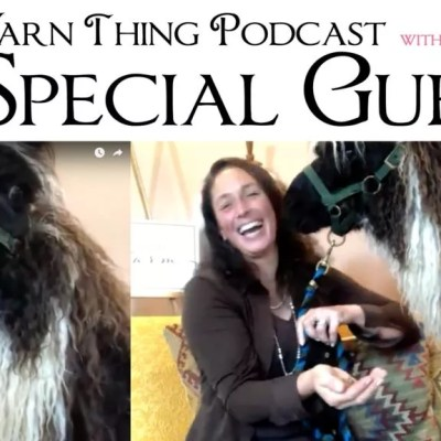 Long Island Yarn and Farm is our special guest on the Yarn Thing Podcast